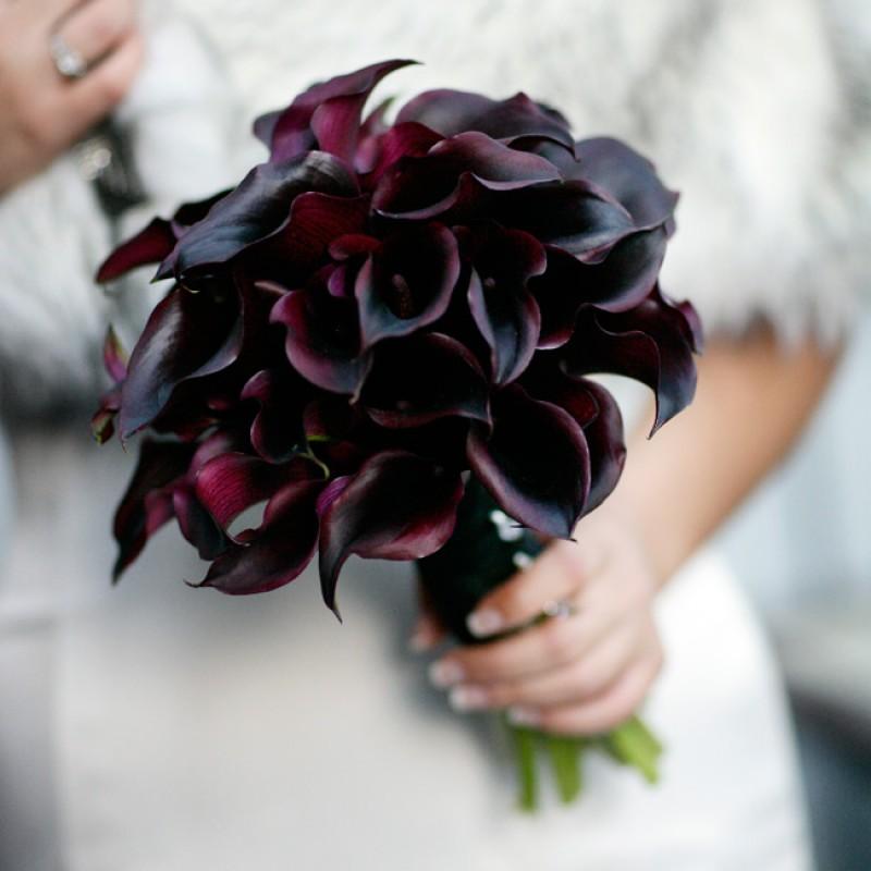 Черные каллы букет, цветов вологда доставка