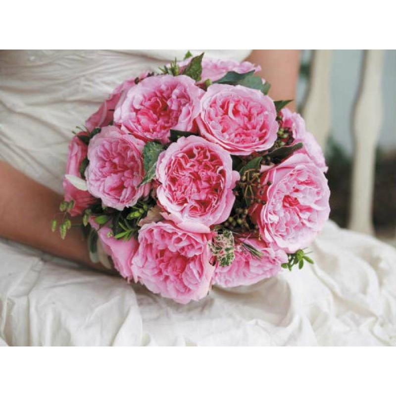 Английская невеста